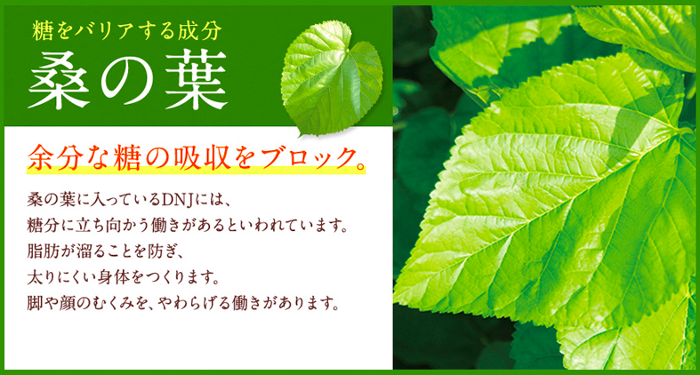 桑の葉の成分