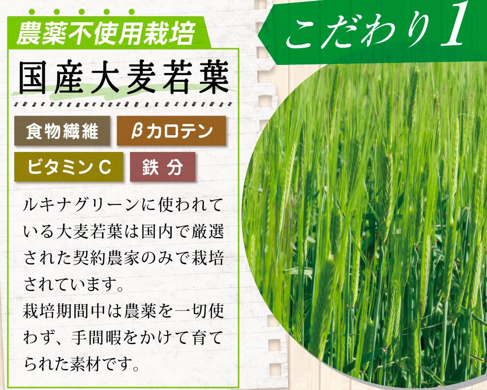 ルキナグリーン 大麦若葉