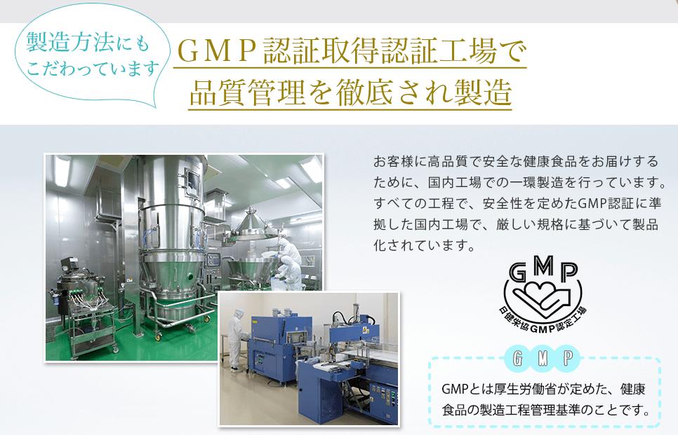 GMT工場