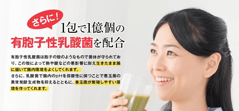モリンガの青汁 乳酸菌